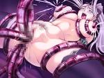 Lilia Princess_Knight_Lilia Tentacle censored double_penetration lactation rape spread_legs // 640x480 // 71.1KB